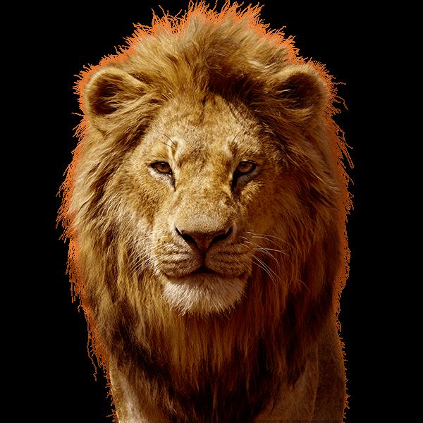 个性皮肤:狮子王